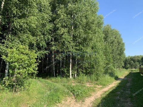 derevnya-knyazhevo-krasnoslobodskiy-selsovet-gorodskoy-okrug-bor фото