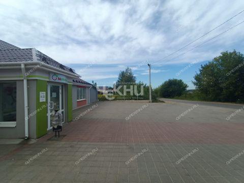 derevnya-malaya-elnya-kstovskiy-rayon фото