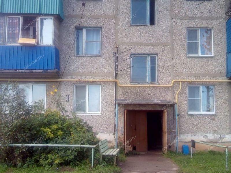 однокомнатная квартира на Школьной улице деревня Инютино