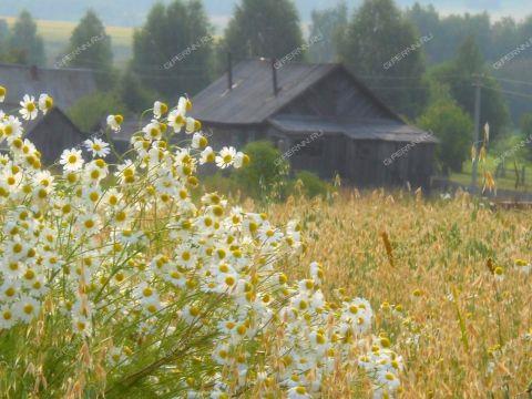 dom-selo-petrovka-lyskovskiy-rayon фото