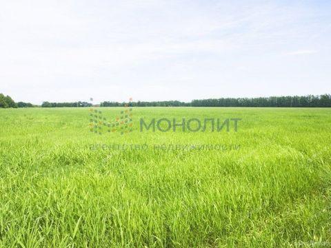 derevnya-starcevo-brilyakovskiy-selsovet-gorodeckiy-rayon фото
